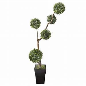 Boule De Buis : arbre boule de buis 6 5 39 d cors v ronneau ~ Melissatoandfro.com Idées de Décoration