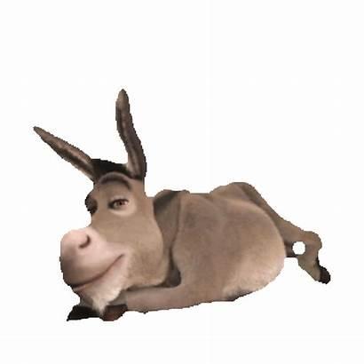 Donkey Shrek Animation Clipart Transparent Sticker Imoji