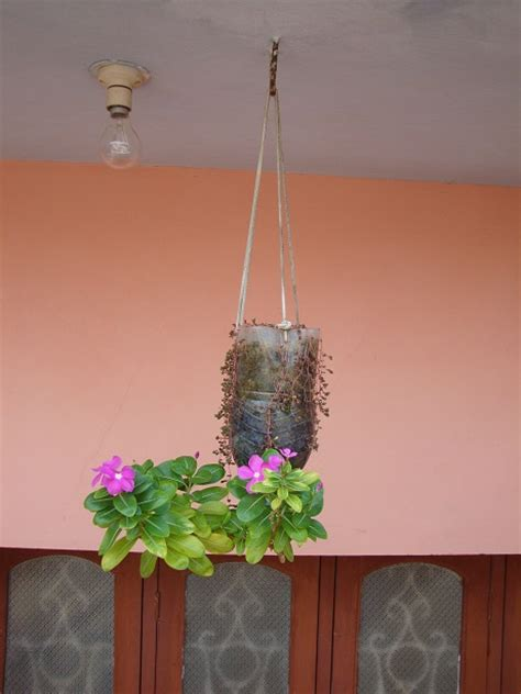 diy reverse hanging planter  plastic pet bottle