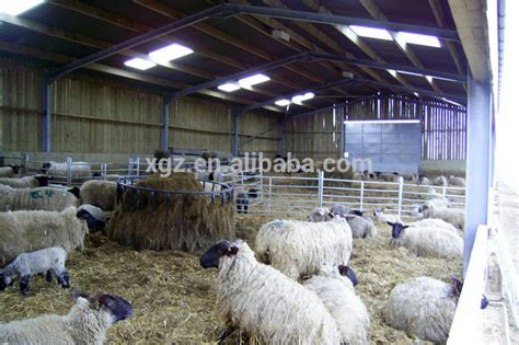 shed for sheep steel structure sheep farm shed buy poultry farming shed