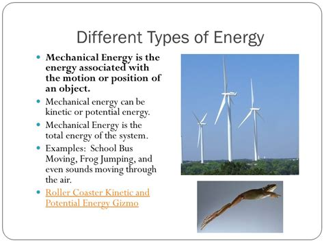 energy flow in ecosystems ppt
