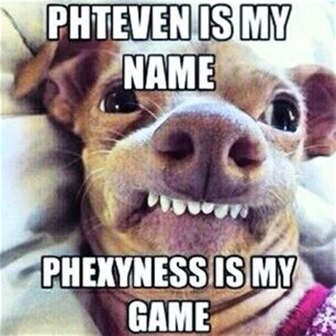 Phteven Meme - 17 best images about tuna the dog as phteven on pinterest game of thrones