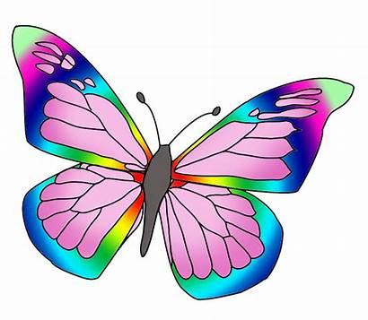 Butterfly Rainbow Colored Colorful Clipartqueen