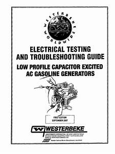 Troubleshooting Guide For Capacitor Excited Generators