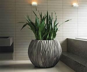 Pflanzen Für Wenig Licht : 1001 ideen f r zimmerpflanzen f r wenig licht dunkle r ume gem tliche wohnung und zimmerdeko ~ Sanjose-hotels-ca.com Haus und Dekorationen