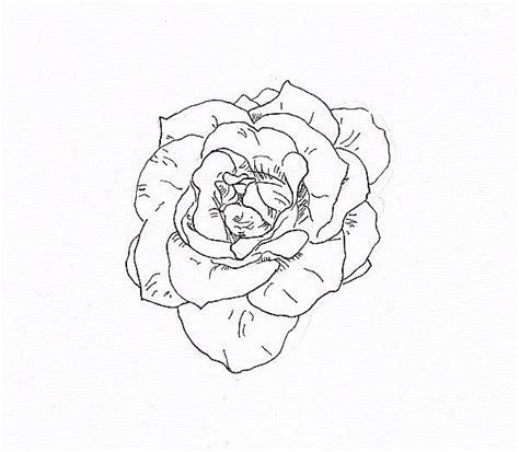 draw  rose  fiber tip