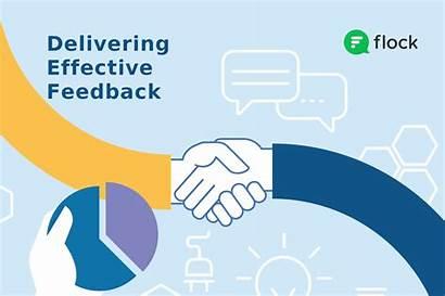 Feedback Negative Effective Giving Flock Providing Process