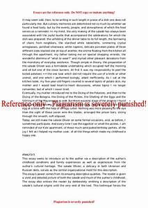 Culinary Arts Essay Eassy On Internet Culinary Arts Paper Topics  Culinary Arts Essay Ideas Biology Help Online