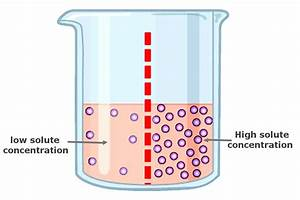 What Is Reverse Osmosis   U00bb Science Abc