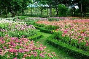 amenager son jardin avec piscine nos conseils With comment creer un jardin paysager