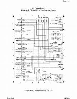1980 Firebird Wiring Diagram 24261 Ilsolitariothemovie It