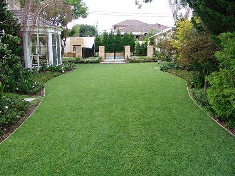 Zoysia Turf Grass Supplier Brisbane Gold Coast