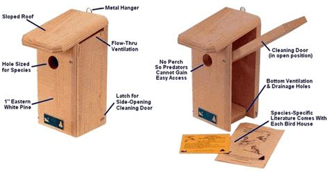 tips  birdhouse placement     houses     wooded area bird house