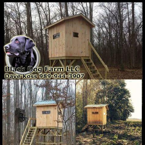 black dog farm llc