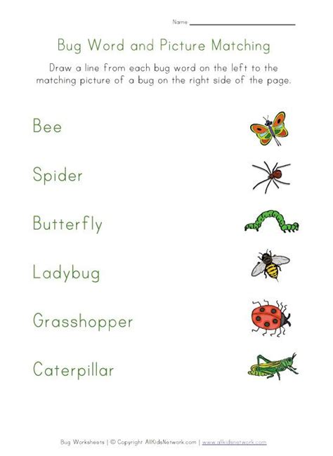 bugs matching worksheet kindergarten worksheets