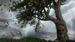 fable or isa récite quot le chêne et le roseau quot youtube