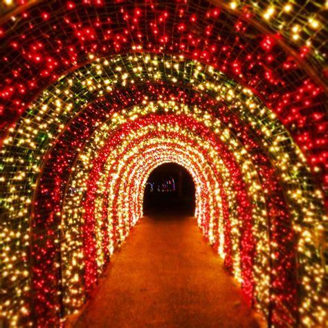 christmas garden oregon tunnel candy silverton lights golocalpdx opens today cane gardens tripadvisor lifestyle