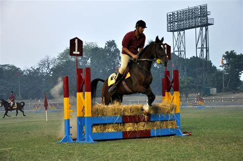 riding horse patiala yps boarding activities