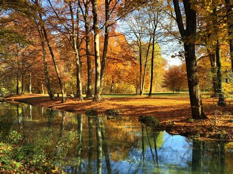 englischer garten münchen pavillon munich garden autumn 183 free photo on pixabay