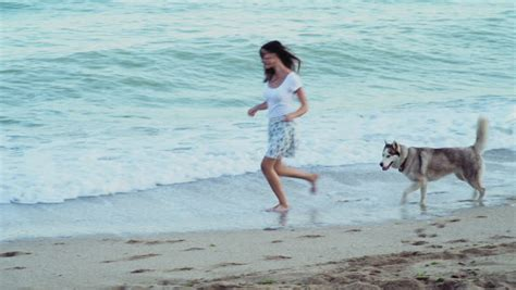 beautiful happy woman playing   dogs  beach stock