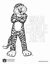 Auburn Coloring Aubie Alumni Tiger War Eagle Backgrounds Downloadable sketch template