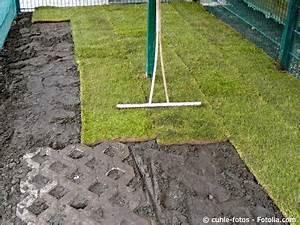 Ab Wann Rasen Vertikutieren : rollrasen verlegen gartentipps ~ Lizthompson.info Haus und Dekorationen
