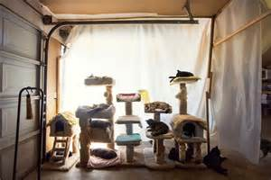the cat house beautiful photographs showcase the cat house on the