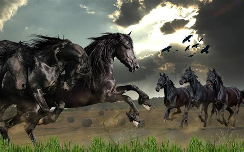 horses wild horse wallpapers screenshot hd google resolution backgrounds ultra apps wallpapers13 4k wallpapersafari android play