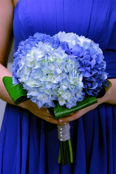 wedding bouquets  hydrangeas deep blue wedding