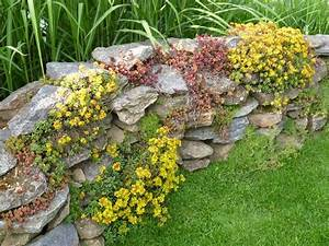Steine Für Gartenmauer : hang steine das beste aus wohndesign und m bel inspiration ~ Sanjose-hotels-ca.com Haus und Dekorationen