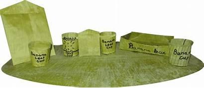 Banana Leaves Technology Plastic Biodegradable Leaf Single