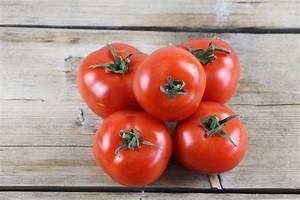Tomaten Wann Pflanzen : anzucht pflanzen und pflege leckere rezepte ~ Frokenaadalensverden.com Haus und Dekorationen
