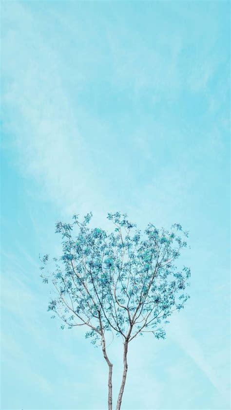 nuansa warna biru pastel blue wallpaper iphone