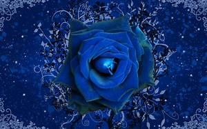 Blue Rose Wallpaper, Dark Blue Rose Wallpaper, #24507