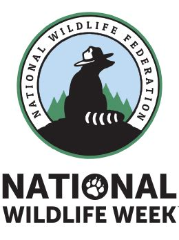 National Wildlife Week  National Wildlife Federation. Database Schema Versioning 38th Street Flats. Remote Network Access Software. Internet Explorer Password Storage. How To Manage Your Online Reputation. Morris County School Of Technology. Carpet Cleaning Baulkham Hills. Alabama Registered Agent Nas With Tape Backup. Colleges In Dc Maryland And Virginia