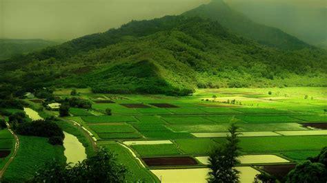 wallpaper windows 10 1080p in 2019 green landscape hd nature wallpapers field wallpaper