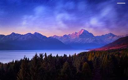 Mountain Night Definition Pine Forest Evening Trees