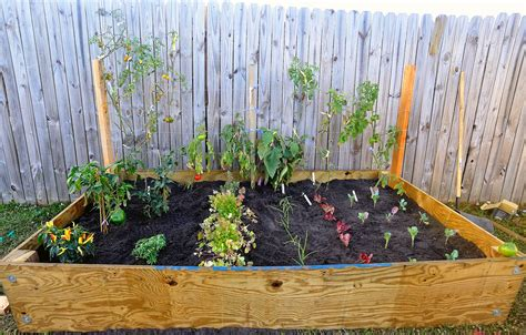 Small Garden : Pictures To Start Vegetable Gardening In Small Spaces