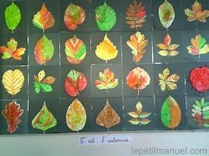 Activité Manuelle Enfant 3 Ans : c 39 est l 39 automne chez les 3 6 ans le blog du petit manuel ~ Melissatoandfro.com Idées de Décoration
