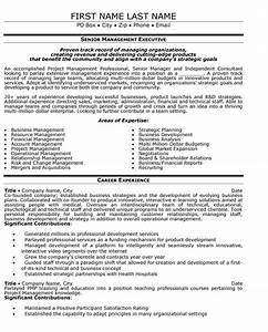 senior manager resume sample template With examples of senior executive resumes
