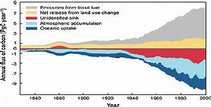 Annual Sources And Sinks Of C From 1850 To 2000 For A