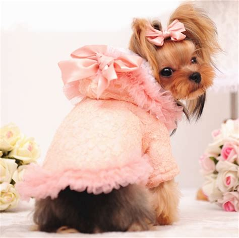 girl dog clothes winter female dog coat pink cute lace