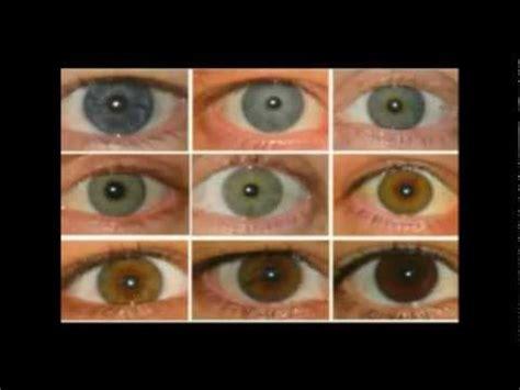eye color  blood types tesla mythological zeus