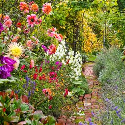 flowers to plant in late summer nix the labor day blues 12 late summer yard and garden upgrades this old house