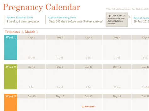 pregnany calendar pregnancy calendar template medical forms