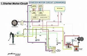 Pulsar Wiring Diagram