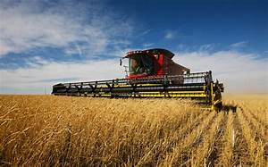 Immigrant farmers vital to Australian agriculture, study ...