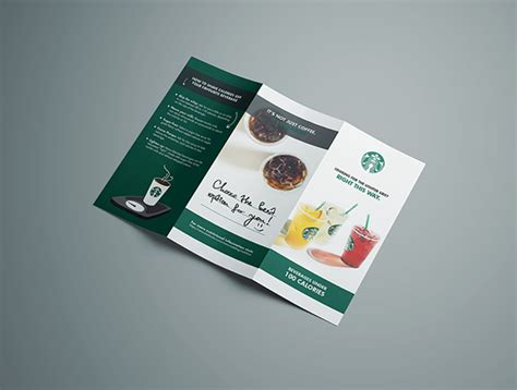 brochure  starbucks  behance