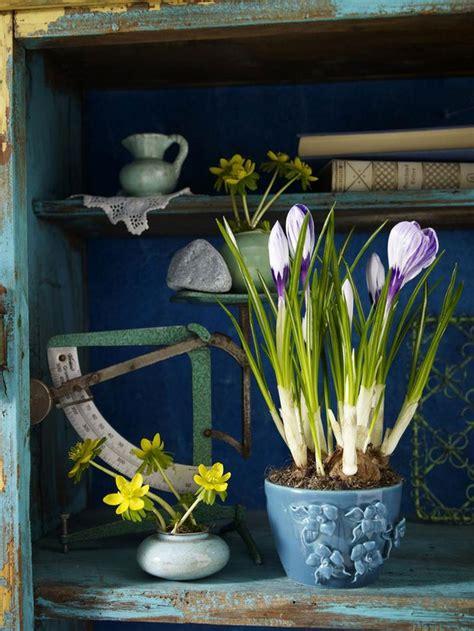 spring decorating ideas refresh  home  spring