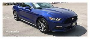Cheap Mustangs for Sale